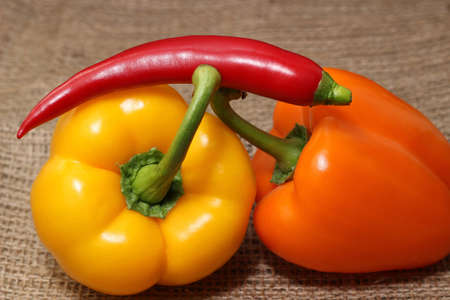 peperoni: Paprika - Peperoni
