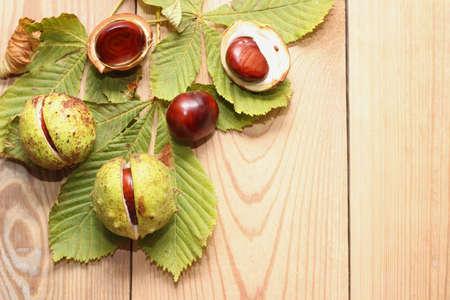 herbst: Herbst - Kastanien