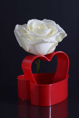 cordially: Rose with heart Stock Photo
