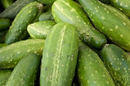 Cucumbers close