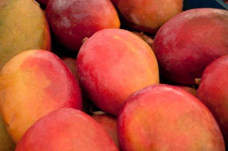 Pretty close of many mangos Stock Photo - 14685253