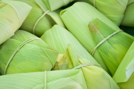 close of group of sweet tamale corn