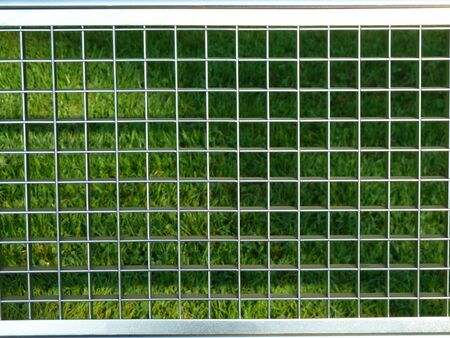 Metal fence in front of green grass Stock Photo - 11563499
