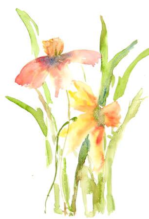 Wild flower painting, watercolor illustrator