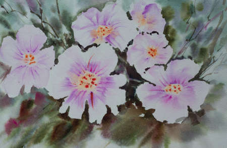 Beautiful pink flowers, watercolor painting