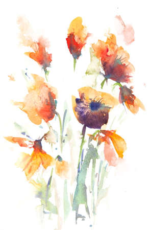 Blossom summer flowers on white,watercolor painting