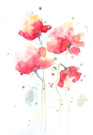 Stylisé peinture de fleurs de pavot sur blanc