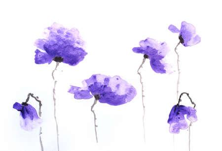 Stylized poppy flowers painting on white
