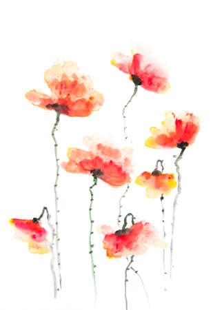 Stylized poppy flowers on white