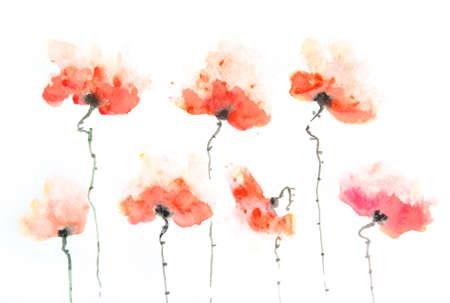 Stylized poppy flowers on white, hand painted Zdjęcie Seryjne