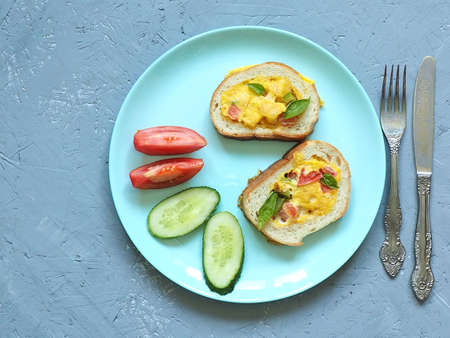 Toast with egg and vegetables on a gray background in a plate. The view from the top.