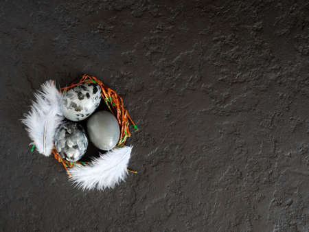 Easter eggs in a nest with feathers on a black background. The concept of Easter. Copy space.
