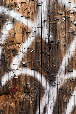telephone pole: close up of a telephone pole with metal, old, rusty staples and white graffiti