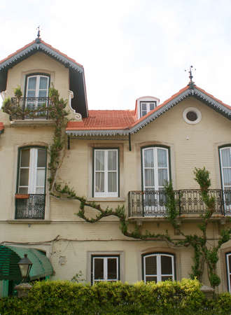 sintra: house with climbing vine in Sintra, Portugal