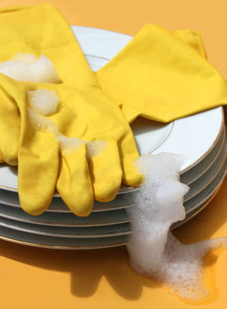 scrubber: washing the dishes