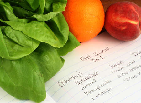 diary of food eaten throughout the day when on a diet photo