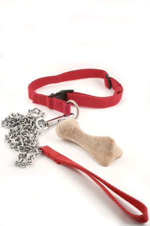 dog leash chain and dog buiscuit with copyspace Stock Photo