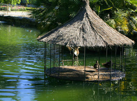 조류 보호소와 장식 오리 연못 스톡 콘텐츠