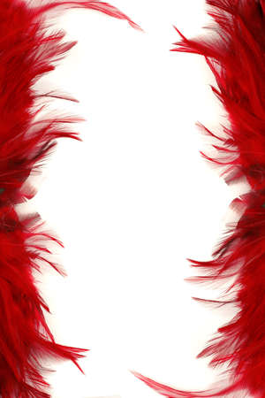 red feather border and frame