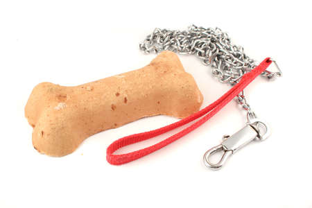 treat like a dog: crunchy dog biscuit treat shaped like a bone and leash Stock Photo