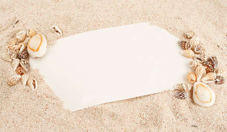 blank note in Caribbean sand and seashells