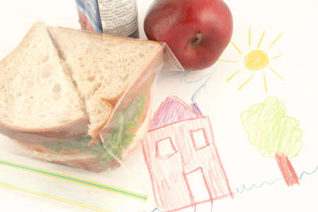 whole wheat sandwich, apple and juice (a healthy lunch) on top of child drawing in school