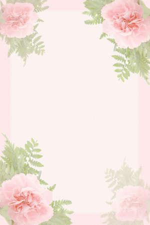 clavel: la frontera rosada hermosa y el verde del clavel hojea Foto de archivo