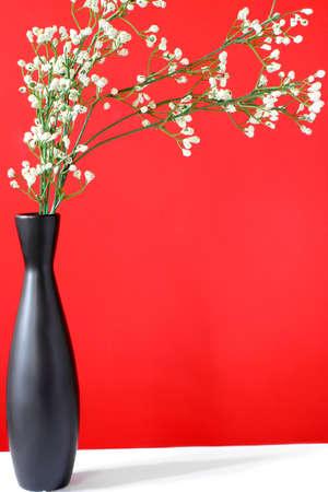 babys: babys breath in black vase with copy space