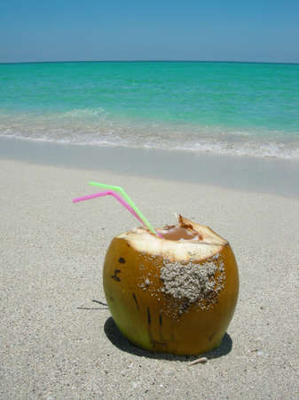 cocunut on a  beautiful Caribbean beach Stock Photo - 1254221