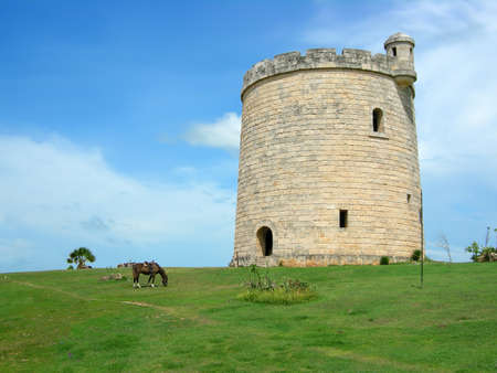 varadero: horses grazing a pasture in front of a castle like tower in Varadero, Cuba Stock Photo