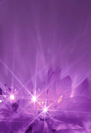 abstract twinkiling poinsettia christmas lights in purple