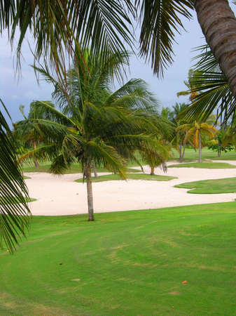 Caribbean golf course with sand and palm trees