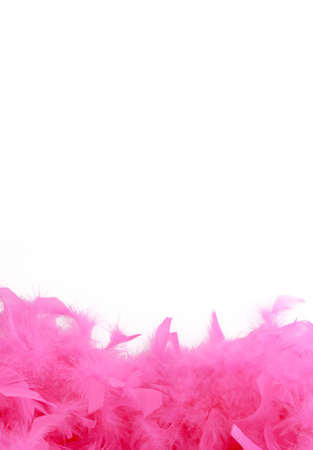 fuschia: glamorous pink feather boa border or background