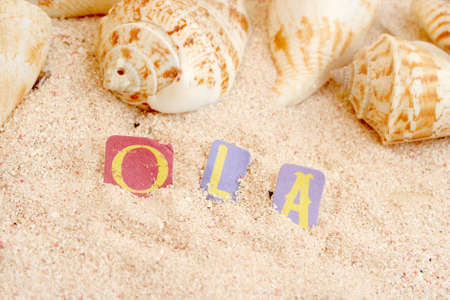 Portuguese or brazilian hello on sandy tropical beach with shells in the background photo