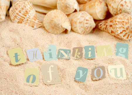 thinking of you: thinking of you sentiments from a tropical sandy beach with shells