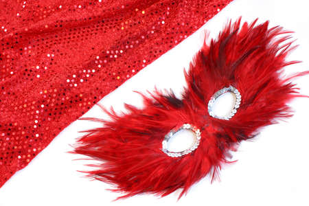 glamorous costume with sequins and feathers appropriate for halloween or a masquerade Banco de Imagens - 3256940