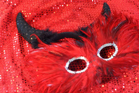 glamorous cotume with sequins and feathers appropriate for halloween or a masquerade Banco de Imagens - 3256944