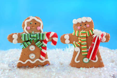 gingerbread man and woman cookies in a winter wonderland wearing  scarves, standing in the snow photo
