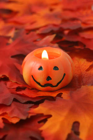 jack o' lantern on golden fall leaves great for halloween Stock Photo - 3563686