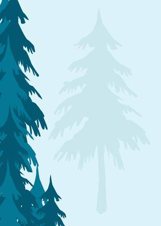 evergreen trees: an evergreen trees background appropriate for stationary Stock Photo