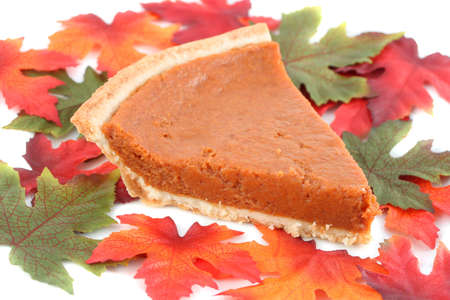 one piece of pumpkin pie on white plate surrounded by fall leaves  photo