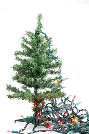 fake christmas tree: small fake green christmas tree waiting to be decorated on a white background with colorful christmas lights hanging
