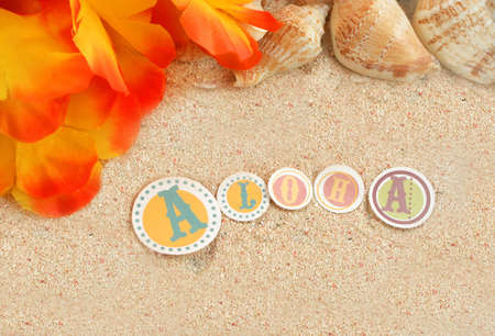 hawaiian beach background with aloha written in tropical sand, with  seashells and a lei  Stock Photo - 3762663