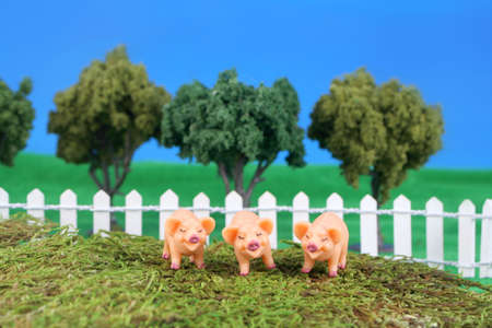 3 little pigs: three little pigs on grass with fence, trees, and blue sky