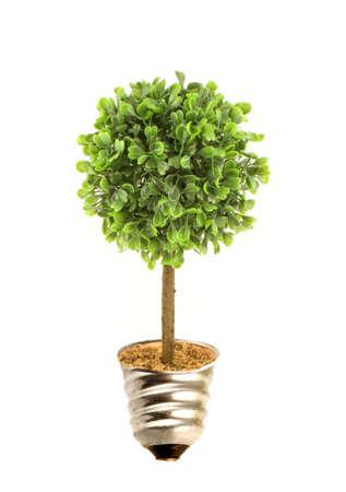 Tree in lightbulb socket symbolizing ecology and eco environmental friendly energy 版權商用圖片