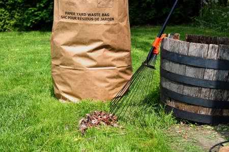 Freshly raked backyard, with rake, leaves and recycling yard waste paper bag photo