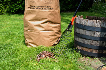 Freshly raked backyard, with rake, leaves and recycling yard waste paper bag Stock Photo