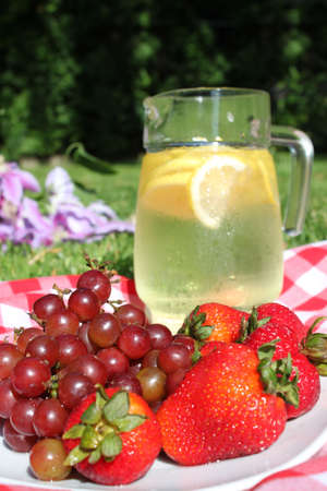 Pitcher of lemonade in jar with lemons, ice, on picnic blanket  trees in the background (focus on grapes) photo