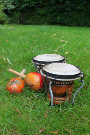 bongos: Colorful latin rhythm instruments, a set of bongo drums and a pair of maracas