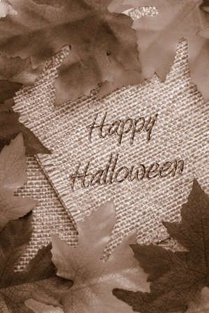 backgrounds: fall background with sepia leaves covering twine rope paper saying Happy Halloween Stock Photo